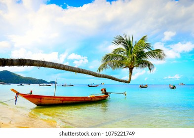 The travle boat in the sea