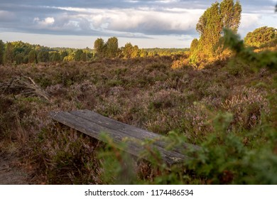 Travle destinations heather