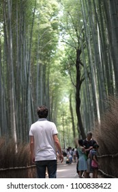 Travler looking up to the bamboo forest in Kyoto, Japan