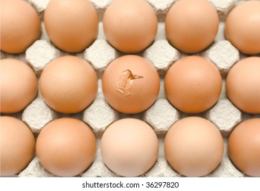 A tray of eggs, one with a crack