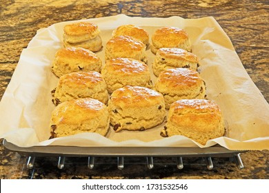 A tray of fresh baked homemade scones just out of the oven.