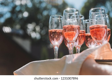 Tray of glasses of summery rose sparkling wine for guests at a wedding reception in the sun rays