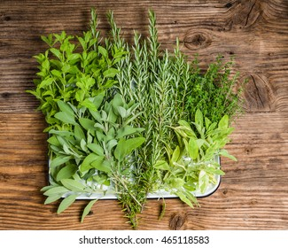 Tray of herbs freshly picked from the garden