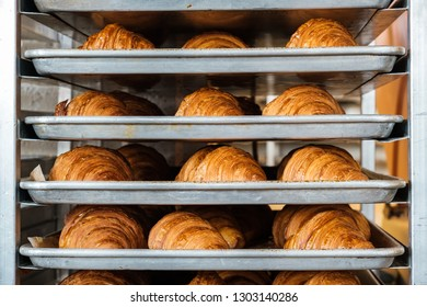 Trays of freshly baked croissants in a bakery.