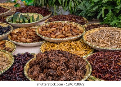 Trays of Fried Insects, Larvae, Grubs, and Worms. Sampling of Local Dai Ethnic Minority Food in Southern China. Example of Exotic Cuisine (Kunming, Yunnan Province, China).