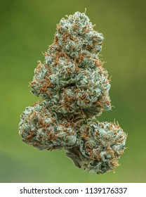 Tre OG Dried Cannabis Flower in Nature