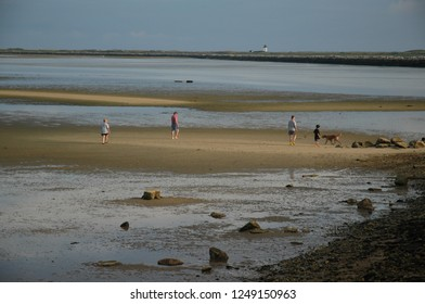 Treasure Hunting- A family with their dog searches the sand during low tide, lighthouse in the background, Provincetown, MA.