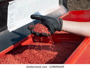 treated wheat seeds, disinfectant