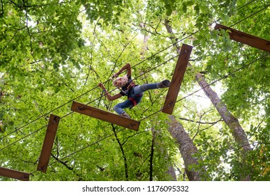 Tree adventure park. Young girl climbing in trees on ropes image shot from below looking up at tree tops.