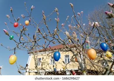 mit Ostereiern verzierter Baum in Österreich