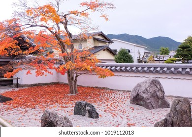 A tree with autumn leaves at Dazaifu, Fukuoka, Japan. The viewing of autumn leaves has been a popular activity in Japan.  autumn foliage season of Japan.