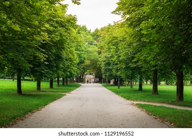 Tree avenue in the middle of the city center. Tivoli or park for outdoor recreation, walks and other sports. Freetime place to be in a good company.