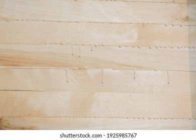 Tree background. Glued boards. Wood texture. Drops of glue close-up. Carpentry work. Lumber at work. Maple and birch boards.