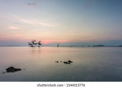 Tree beautiful winter sunset at Lampung beach.