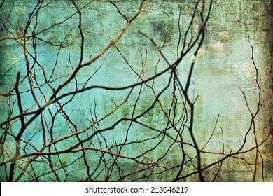 tree branch silhouette over blue sky background, Dry branches in a fall
