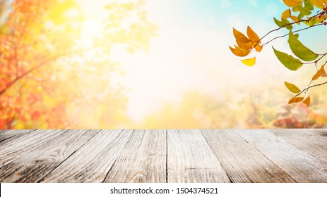 Tree branches with colorful autumn leaves over wooden table