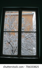 Tree branches covered in snow, visible through a window from inside.