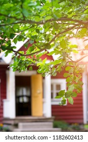 Tree branches in front of red cottage
