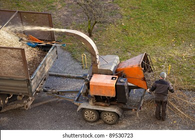 Tree branches are placed in the intake chute for chipping.