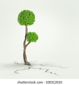 Tree breaks free. Freedom and success concept