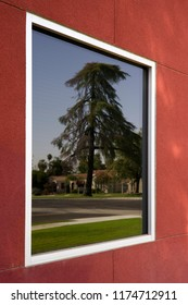 A tree and building are reflected in a structure's window as a picture in a frame.