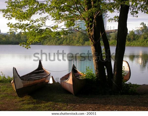 Tree canoes
