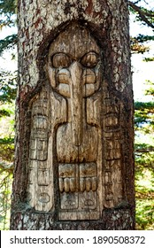 Tree carved by native Tlingit Indians along a trail on top of Mt. Roberts in Juneau, Alaska, USA