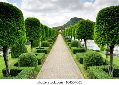 Tree concept of Nong Nooch Garden & Resort