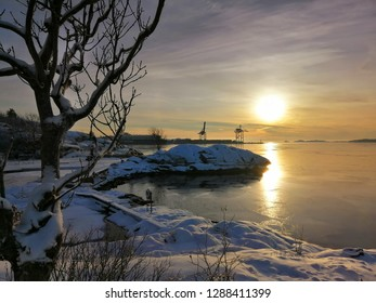 A tree covered with snow captured during sunset. Port of Larvik (Norway) in the background of the photograph.