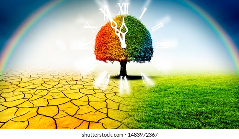 Tree in a desert and a green meadow in climate change with clock