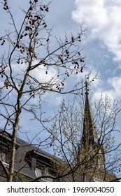 The tree and the dome of the Catholic Church in the Austrian town of Villach in Carinthia, against the background of the blue sky