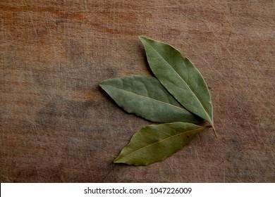 tree dry bay leaf on a rough wooden cutting board