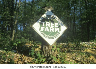 Tree farm sign