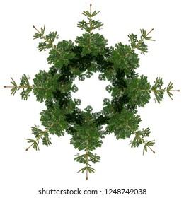 tree - fir isolated - wreath, kaledoscope