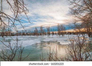 Tree framed frozen river landscape in winter.