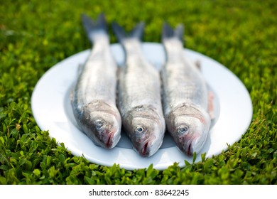 Tree fresh fishes on the plate