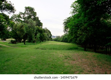 Tree and grassland views, in the park of Thailand