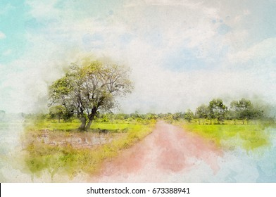 Tree and ground road in countryside. Aquarelle water paint effect