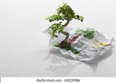 Tree Growing From Drawing