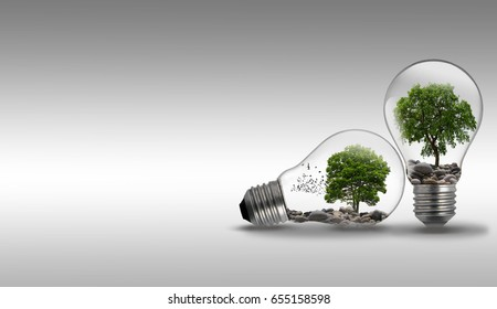 Tree growing in a light bulb on gray background, Eco or safe energy concept