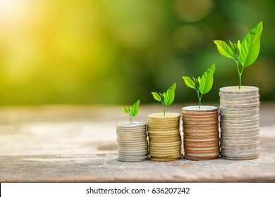 Tree growing on coins stack with sunlight for saving money concept