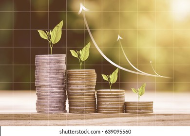 Tree growing on coins stack with growing graph for finance and business concept
