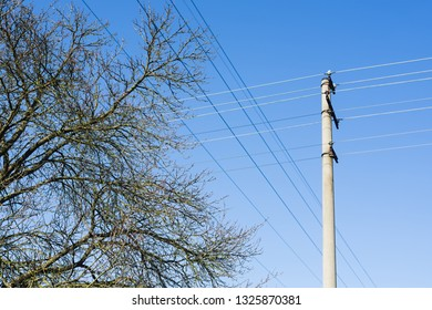 Tree. High voltage columns, in the background with blue sky and clouds. Prices of electricity, consumption, ecology.