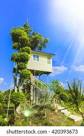 tree house on blue sky and cloud, nature Thailand