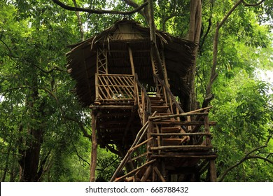 A Tree house in the western ghats of Kerala, India.
