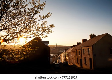 Tree and houses lit by warm evening light in Derry, Northern Ireland, UK