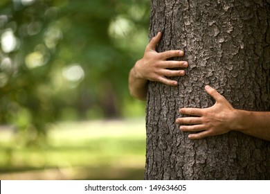 Tree hugging. Close-up of hands hugging tree