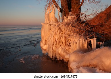 Tree with icicles near Volga river at sunset, Russia