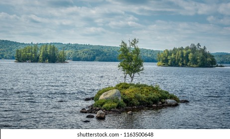 Tree isolated on a small island at Tupper Lake, the Adirondacks, New York