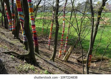 Tree Knit bombing along minuteman bike path